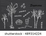 hand drawn sugar cane set.... | Shutterstock .eps vector #489314224