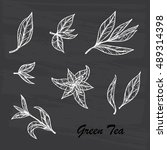 hand drawn engraving style... | Shutterstock .eps vector #489314398