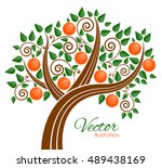 Vector Illustration Of Fruit...