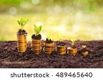 golden coins in soil with young ... | Shutterstock . vector #489465640