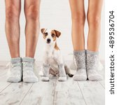 man  female and dog in socks.... | Shutterstock . vector #489536704