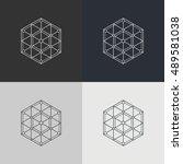 abstract technology element.... | Shutterstock .eps vector #489581038