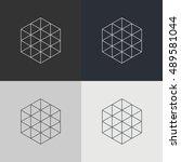 abstract technology element.... | Shutterstock .eps vector #489581044