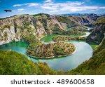 griffon vulture flying over... | Shutterstock . vector #489600658