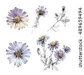 blue cornflower set. realistic... | Shutterstock . vector #489659494