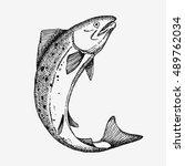 jumping salmon fish. hand drawn ...   Shutterstock .eps vector #489762034