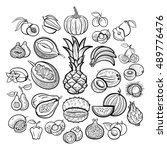 big fruits collection.... | Shutterstock .eps vector #489776476
