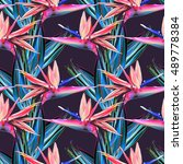 seamless pattern with...   Shutterstock . vector #489778384