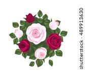 Stock vector white roses pink roses and red roses on white background roses card 489913630