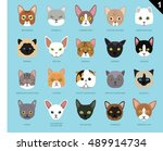 Cat Faces Icon Cartoon 1