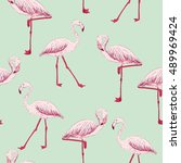 vector sketch of a flamingo.... | Shutterstock .eps vector #489969424