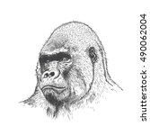 gorilla portrait. detailed hand ... | Shutterstock .eps vector #490062004