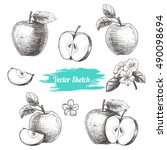 vector apples hand drawn sketch ... | Shutterstock .eps vector #490098694