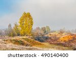 autumn landscape. yellow trees in fog on the meadow - stock photo