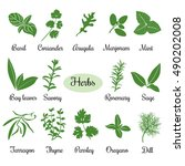 big vector set of popular fresh ... | Shutterstock .eps vector #490202008