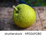 A Whole Breadfruit