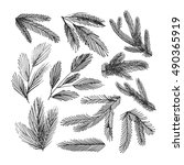 collection of hand drawn spruce ... | Shutterstock .eps vector #490365919