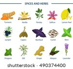 set of icons of seasoning or... | Shutterstock .eps vector #490374400