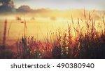 sunrise   Shutterstock . vector #490380940