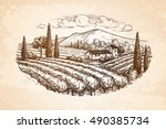 hand drawn vineyard landscape... | Shutterstock .eps vector #490385734