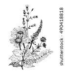 vintage monochrome watercolor...   Shutterstock .eps vector #490418818