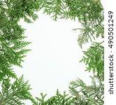 ever green fir tree decoration... | Shutterstock . vector #490501249