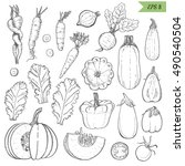 set of isolated vegetables in a ... | Shutterstock .eps vector #490540504