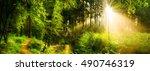 idyllic sunrise in forest   Shutterstock . vector #490746319