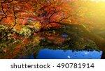 Daigoji Temple Garden  Autumn...