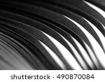 curled in a roll black paper... | Shutterstock . vector #490870084