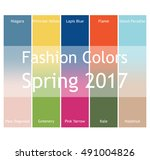 blurred fashion infographic... | Shutterstock .eps vector #491004826