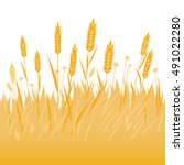 field of wheat  barley or rye... | Shutterstock . vector #491022280