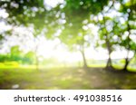 defocused bokeh background of... | Shutterstock . vector #491038516