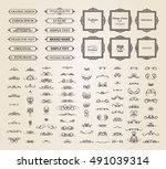vintage set exclusive borders... | Shutterstock . vector #491039314