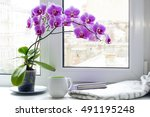 Cup  Plaid  Book And Orchid On...