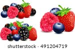 strawberry  blackberry ... | Shutterstock .eps vector #491204719