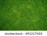 green grass texture background. ... | Shutterstock . vector #491217433