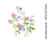 summer meadow flowers. clover... | Shutterstock .eps vector #491227264