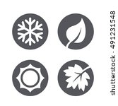 a set of four seasons icons.... | Shutterstock .eps vector #491231548