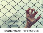 hand with metal fence  feeling... | Shutterstock . vector #491251918