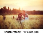 young man with his dog in field ... | Shutterstock . vector #491306488