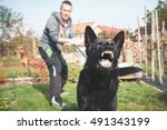 aggressive dog is barking.... | Shutterstock . vector #491343199