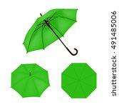 light green umbrella vector... | Shutterstock .eps vector #491485006