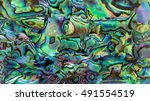 close up shot the iridescent of ... | Shutterstock . vector #491554519