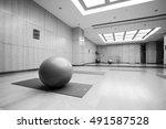 interior of yoga   dance... | Shutterstock . vector #491587528