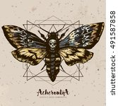 Death's Head Hawk Moth And...