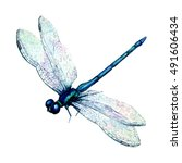 Stock photo hand drawn watercolor illustration of blue dragonfly isolated on white background beautiful insect 491606434