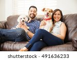 Stock photo portrait of a cute young hispanic couple relaxing at home and sitting with their dogs and smiling 491636233