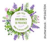 herbs de provence. bunch of... | Shutterstock .eps vector #491662504