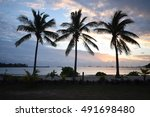 when the night falls in paradise | Shutterstock . vector #491698480